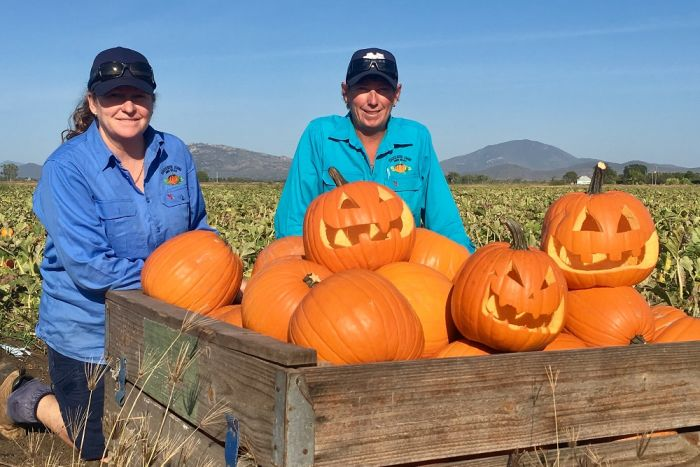 Michell (left) and Belinda (right), image courtesy Lara Webster, ABC Rural,  http://www.abc.net.au/news/rural/2017-10-10/halloween-pumpkins-bring-relief-for-north-queensland-growers/9032998