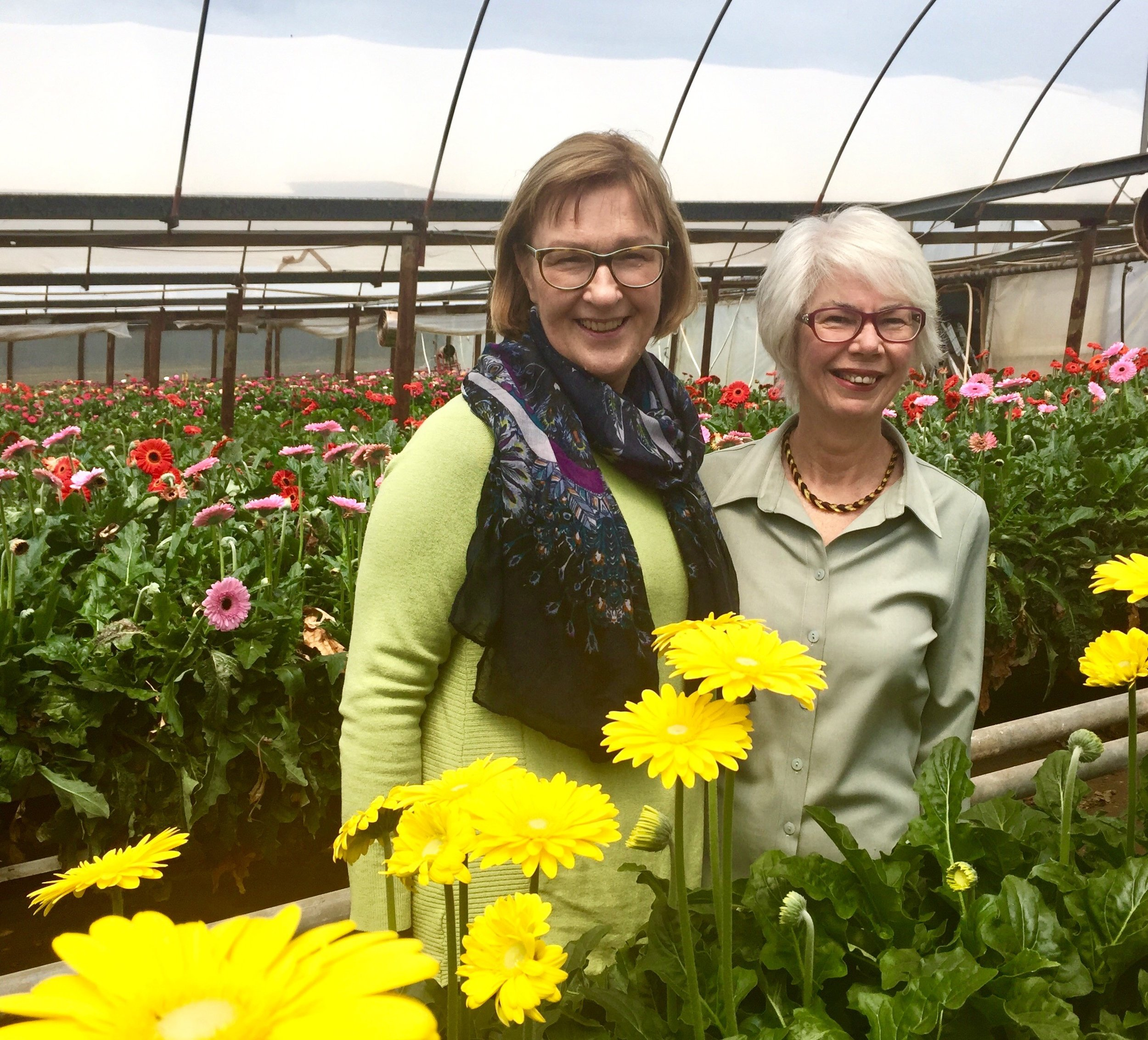 Ilse Matthews (left) and Allison Brinson (right) at Proteaflora Flowers, 2017, image supplied.
