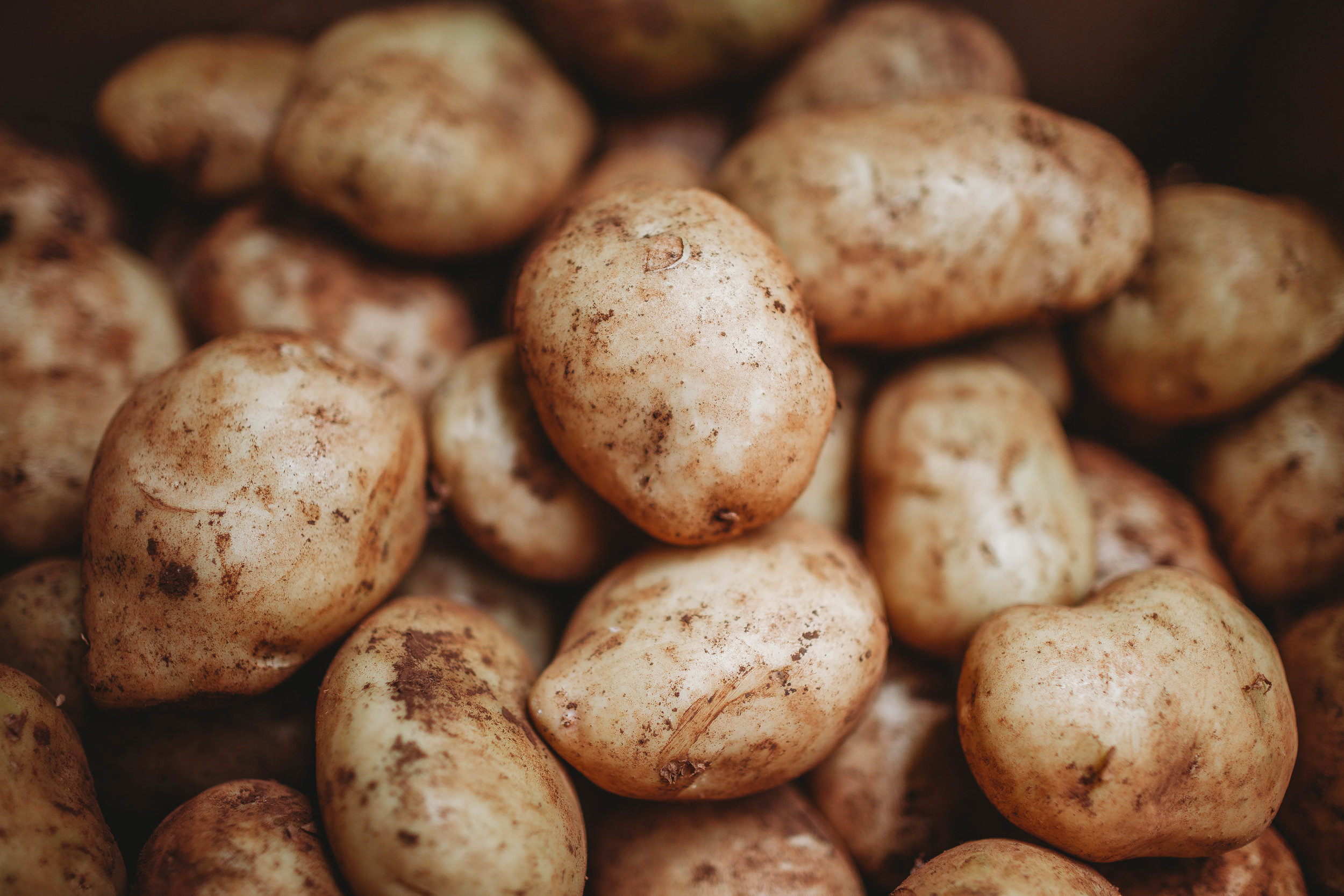 The Perfectly Roasted Potato-1.jpg