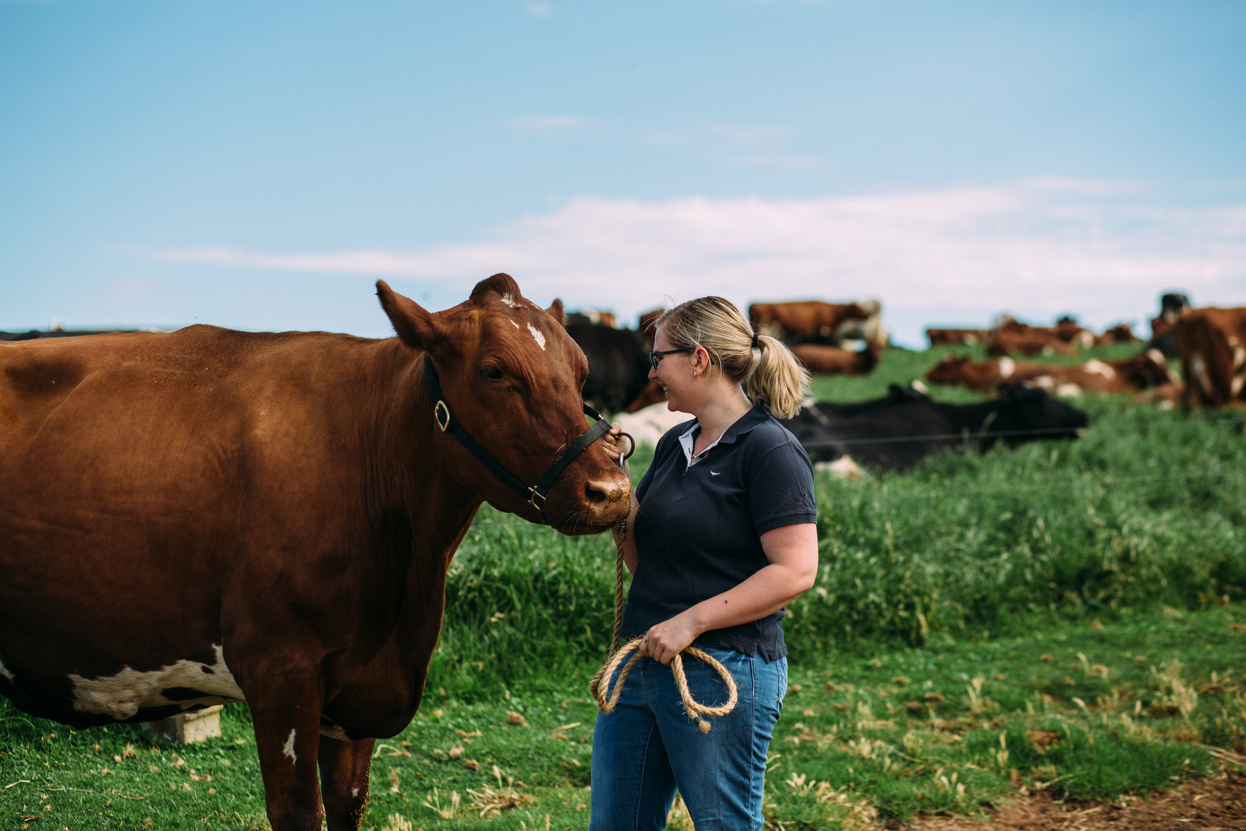 Emily with her favourite cow, Begonia, photographed by Catherine Forge, Murray Bridge, Source: Museums Victoria: https://collections.museumvictoria.com.au/items/2243769