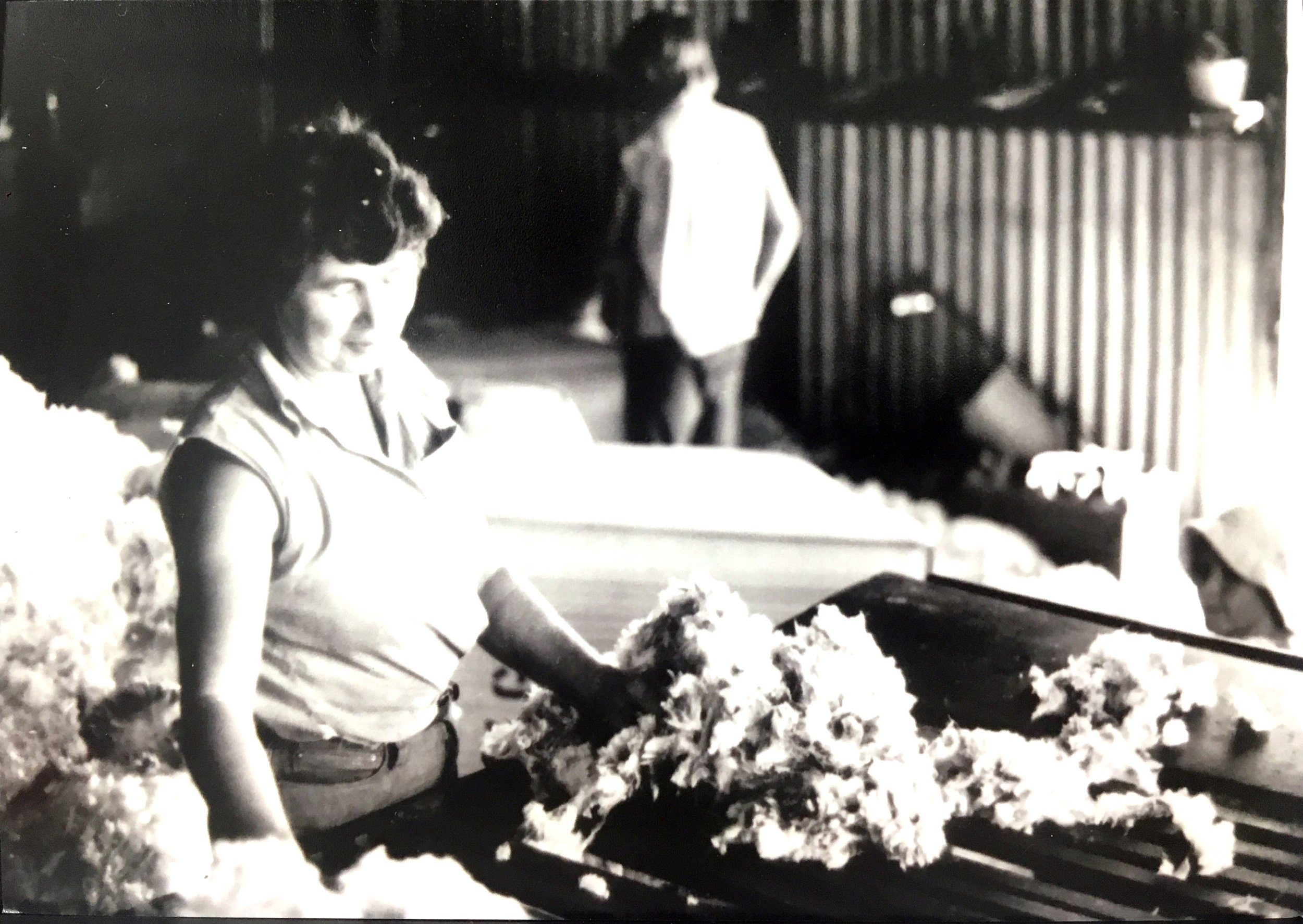 "Mira Galvin classing wool at ""Coralya"", 1970. Photo: supplied by Aileen Spangaro."