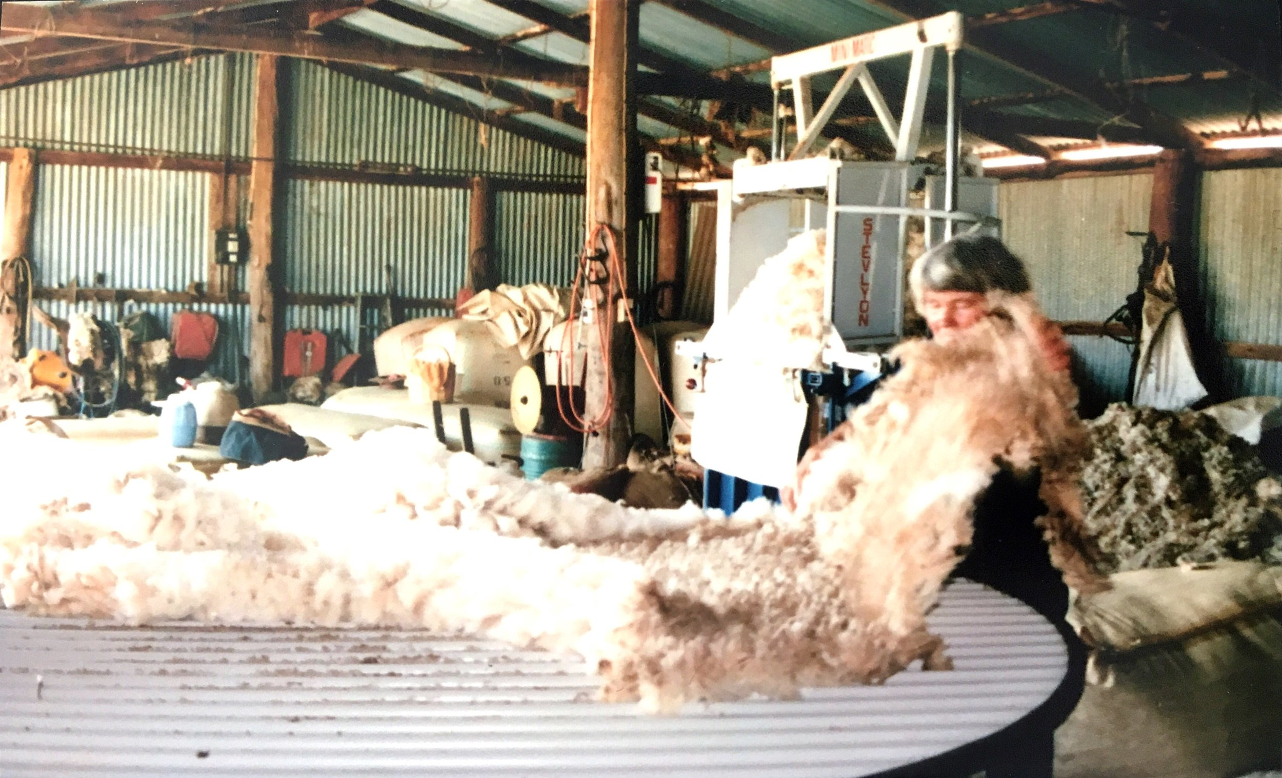 "Mira Galvin classing wool at ""Coralya"", 1980. Photo: supplied by  Aileen Spangaro."