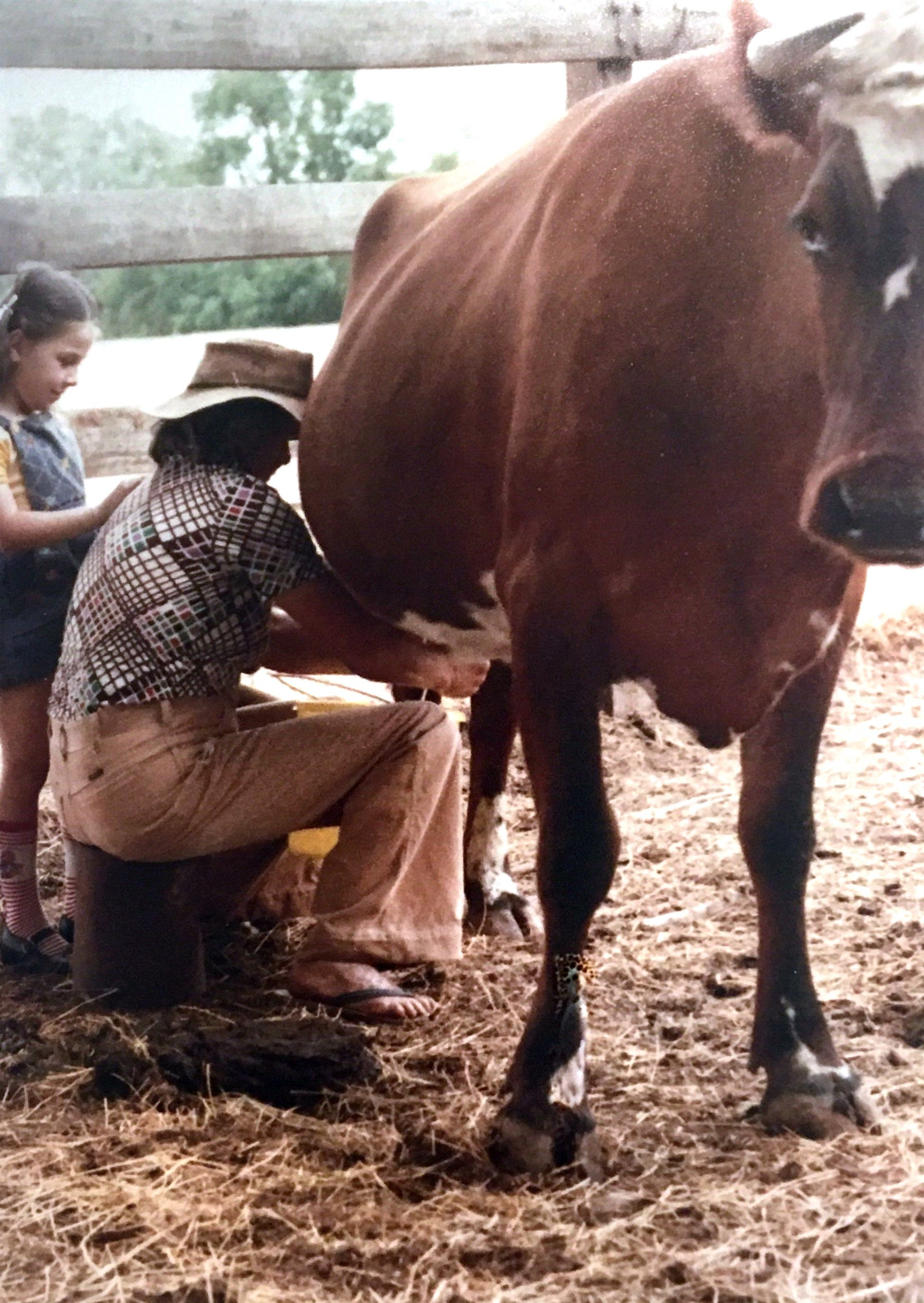 Mira Galvin teaching her niece Rebecca Spangaro how to milk the cow, 1976. Photo: supplied by Aileen Spangaro.