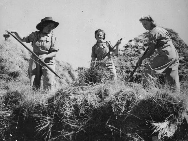 Australian Women's Land Army, 1942- 1945: Source: Australian War Memorial.