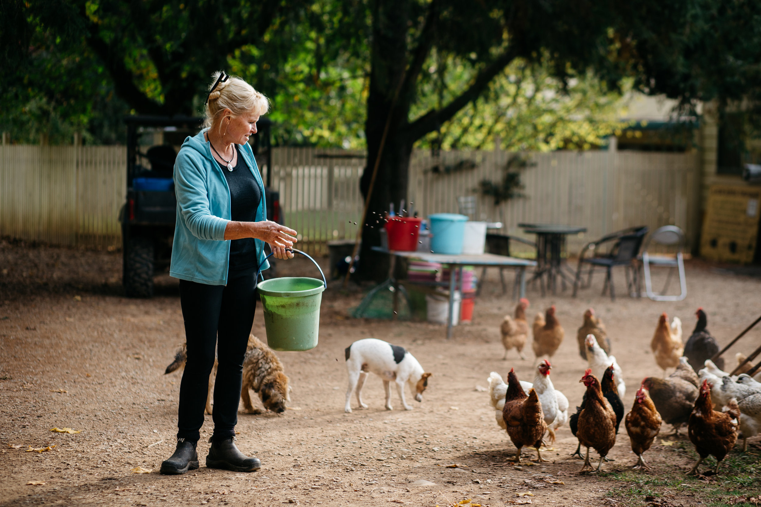 Sally Hall feeding chooks on her farm, Harrietville (Victoria), Photographer: Catherine Forge, Source: Museums Victoria [MM 145576:  https://collections.museumvictoria.com.au/items/2241610 ].