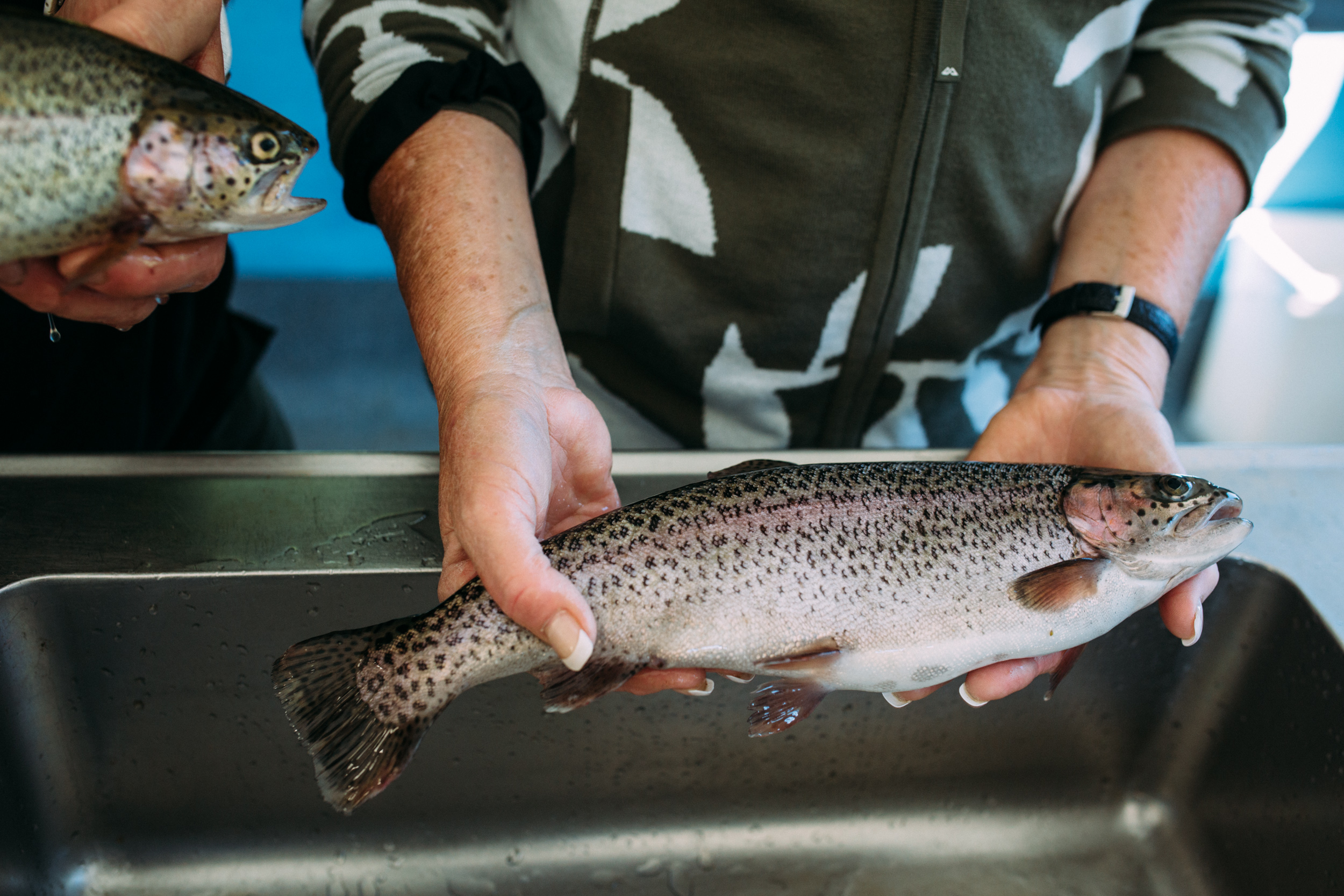 Sally holding a trout, Mountain Fresh Trout and Salmon Farm, Harrietville (Victoria), 2018, Photographer: Catherine Forge.
