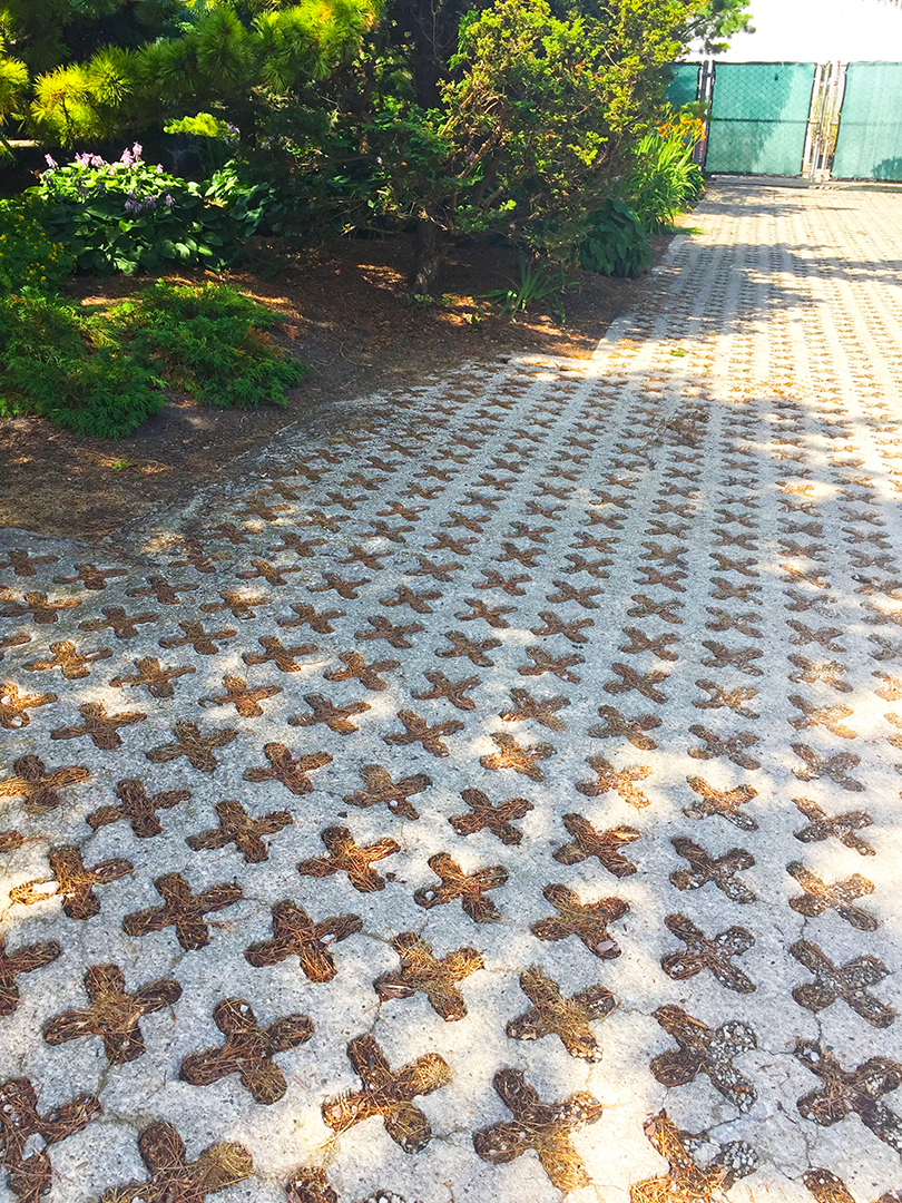 Loving this 'X' pattern! This is located just a few feet east of the Lincoln Park Conservatory.