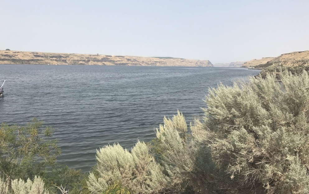 A view of the Columbia River