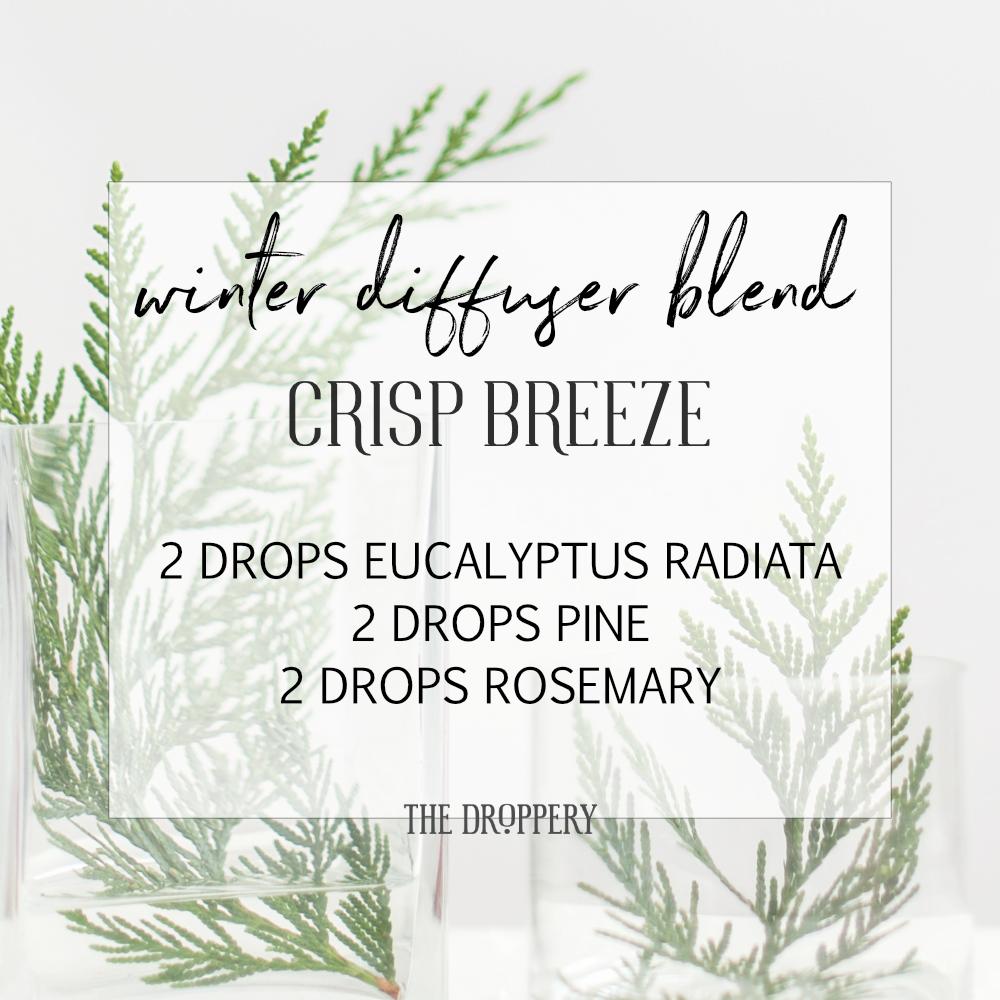 winter_diffuser_blend_crisp_breeze.png