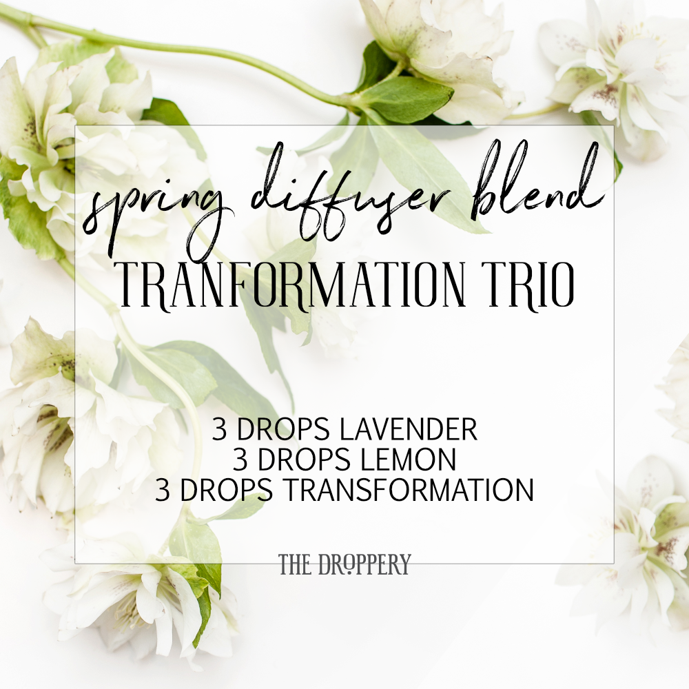 spring_diffuser_blend_transformation_trio.png