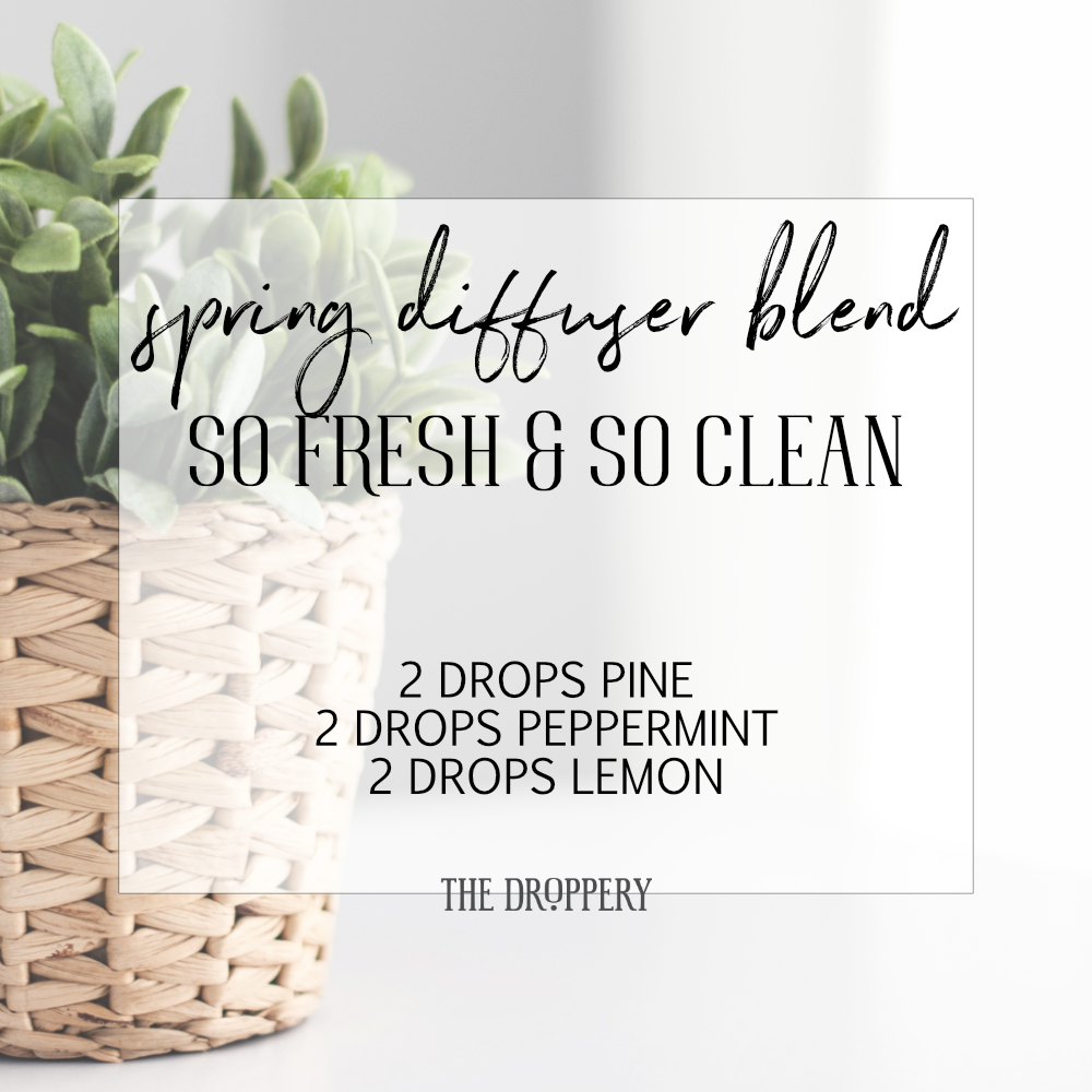 spring_diffuser_blend_so_fresh_and_so_clean.png