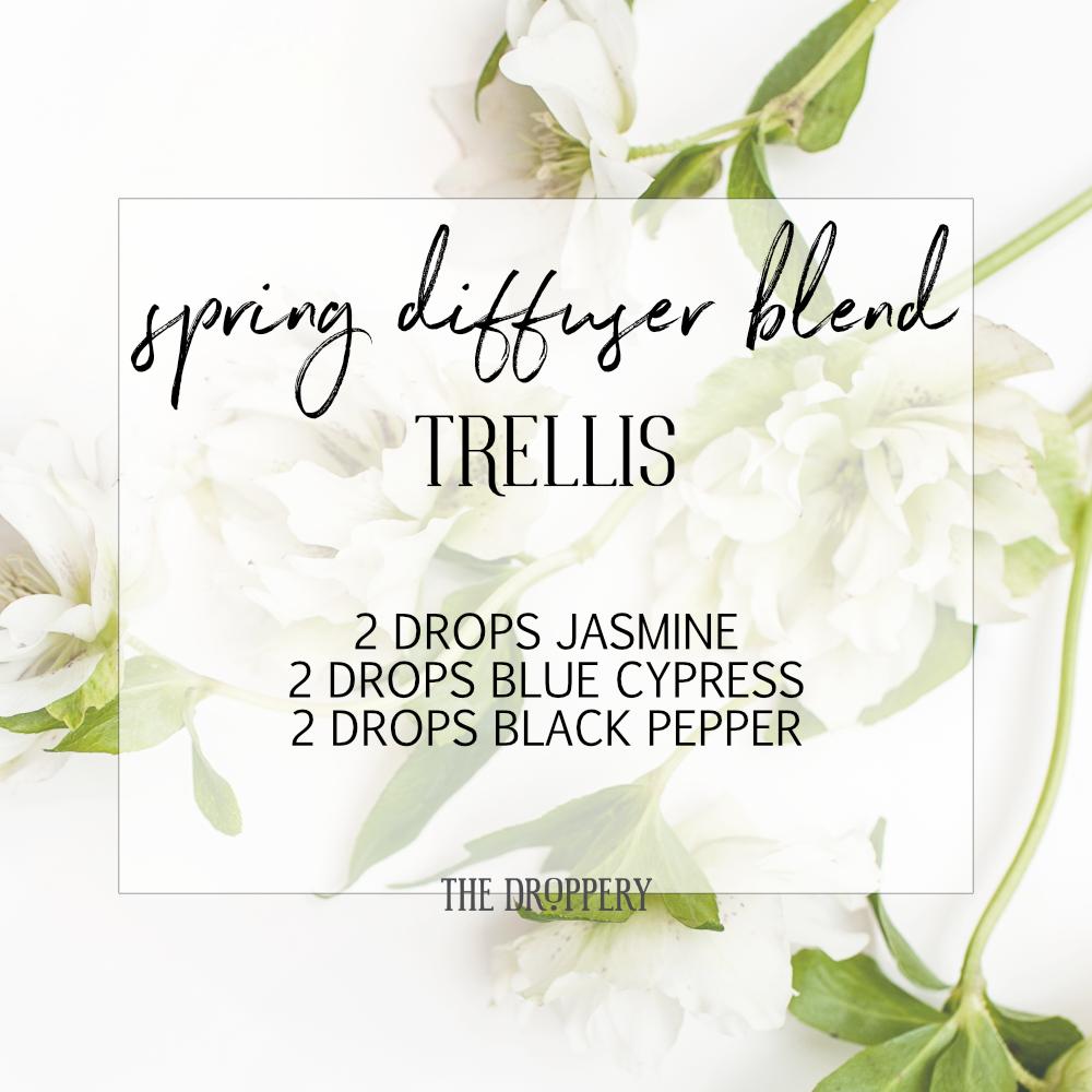 spring_diffuser_blend_trellis.png