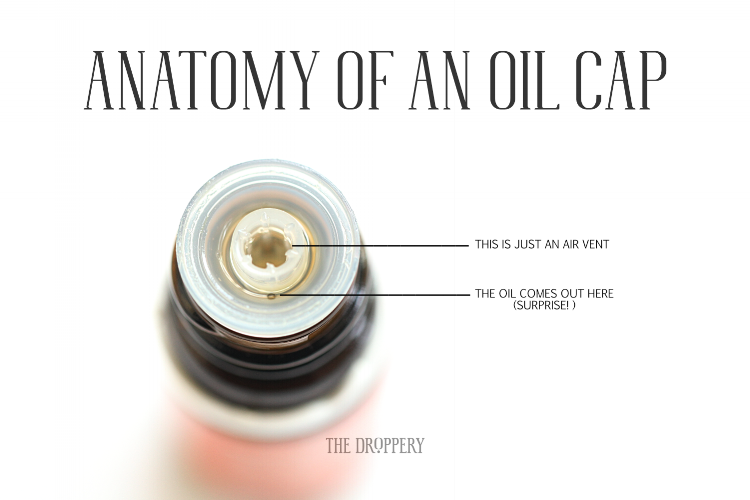 Anatomy_of_an_Oil_Cap.png
