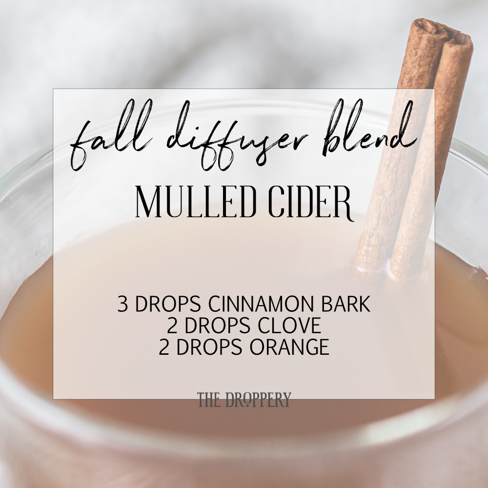 fall_diffuser_blend_mulled_cider.png