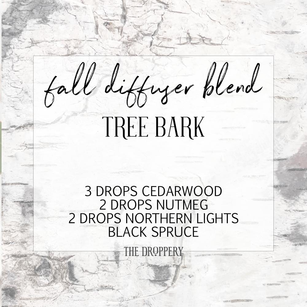fall_diffuser_blend_tree_bark.png