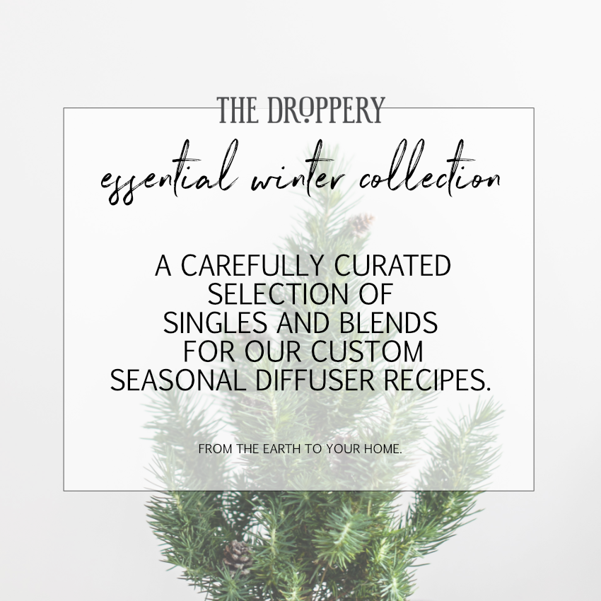 cover_essential_winter_collection_website.png