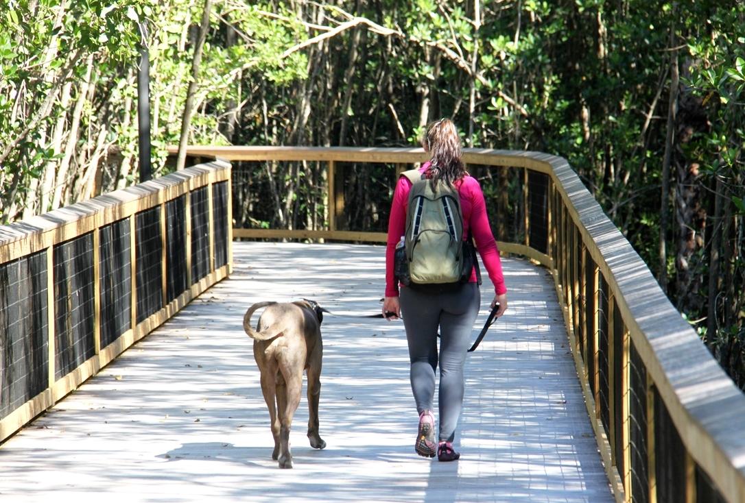 Pedestrian Walking Path