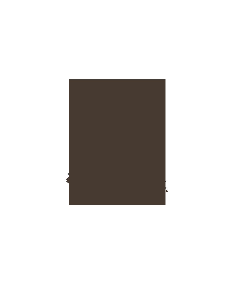 maraCam.png