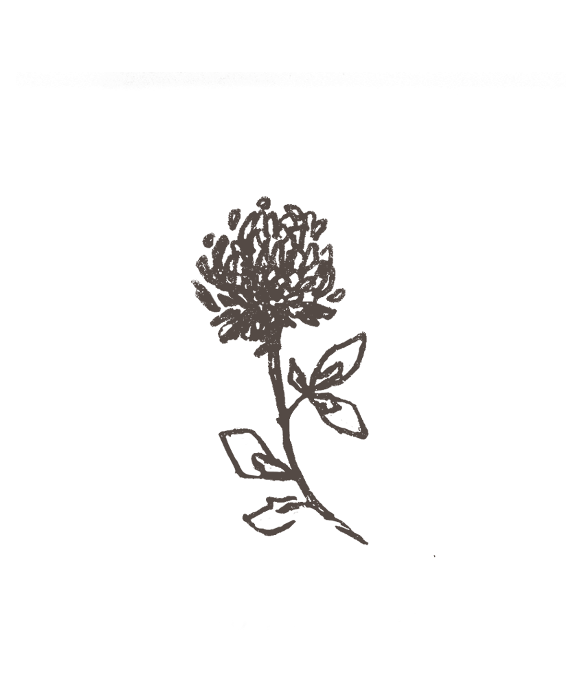 redclover.png