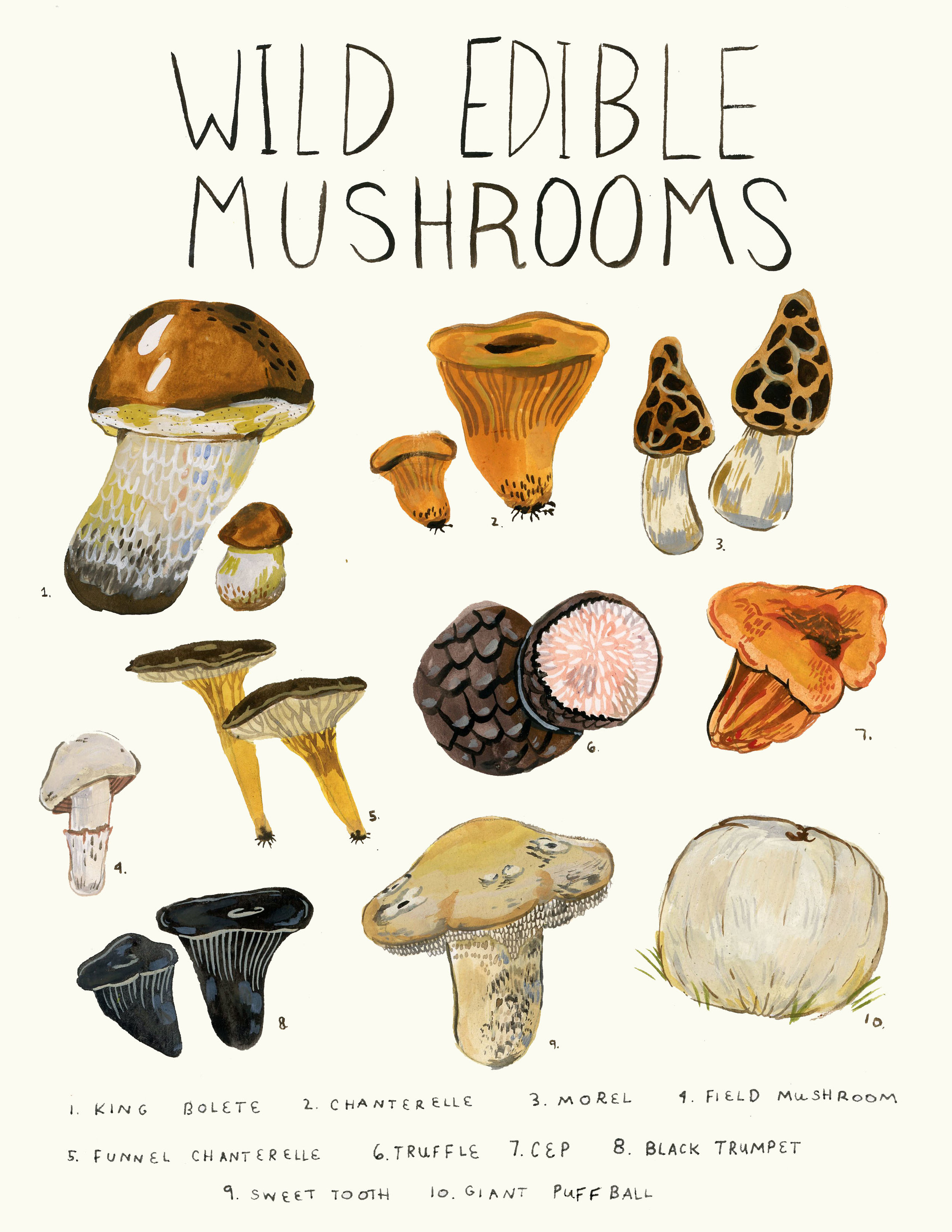 wildmushroomcream.jpg