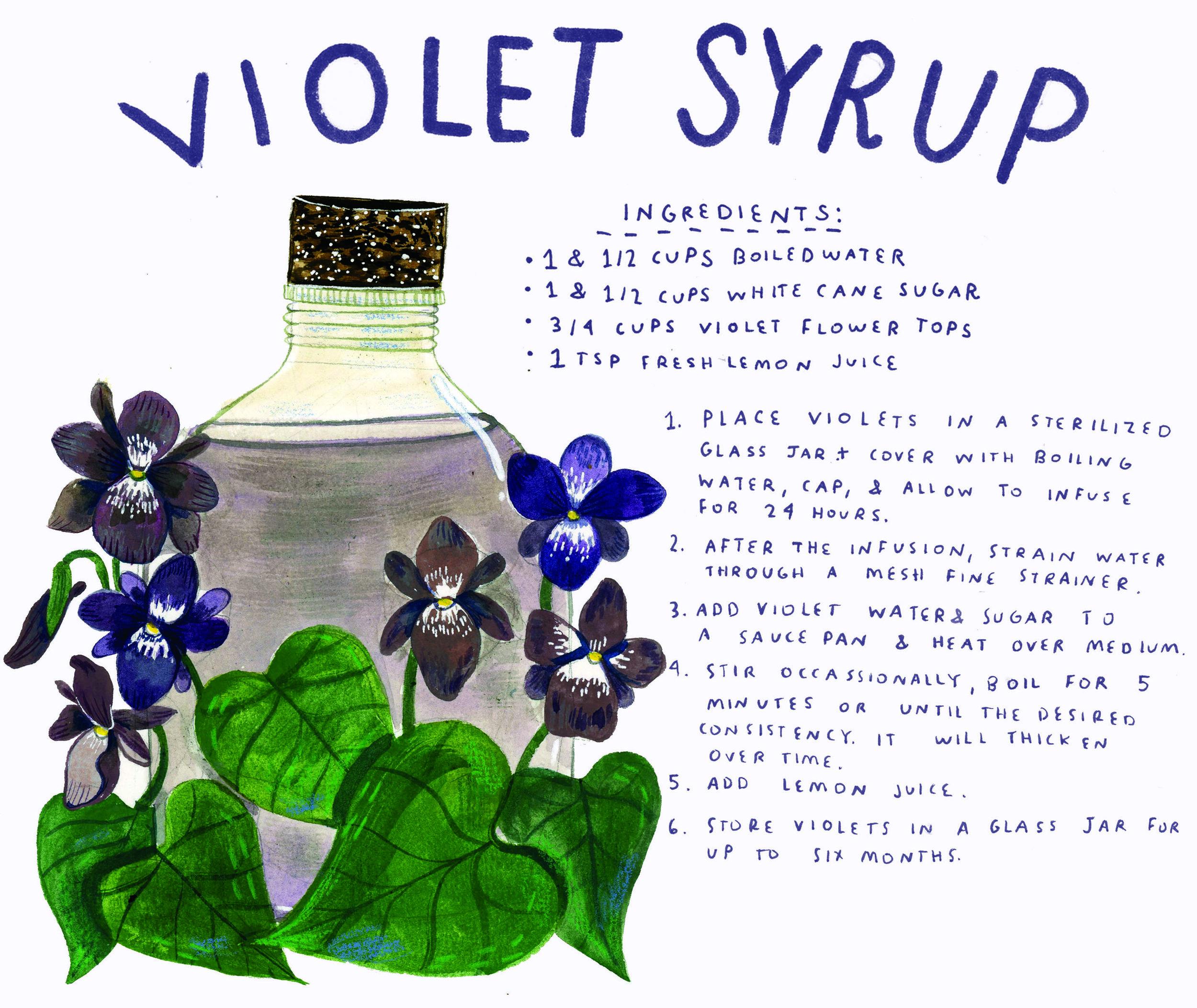 violetsyrup.jpg