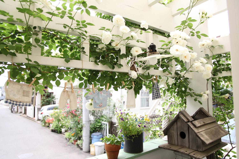 gardenfl010.JPG