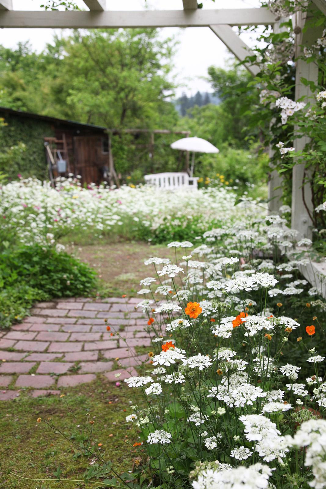 gardenfl018.jpg
