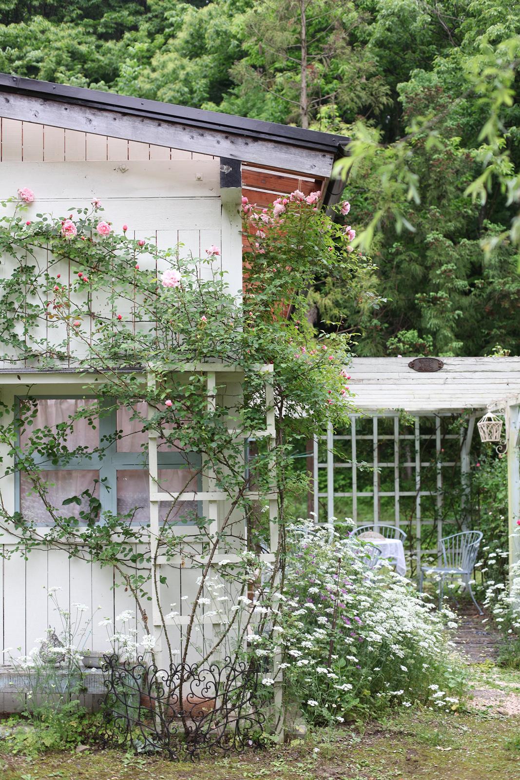 gardenfl021.JPG