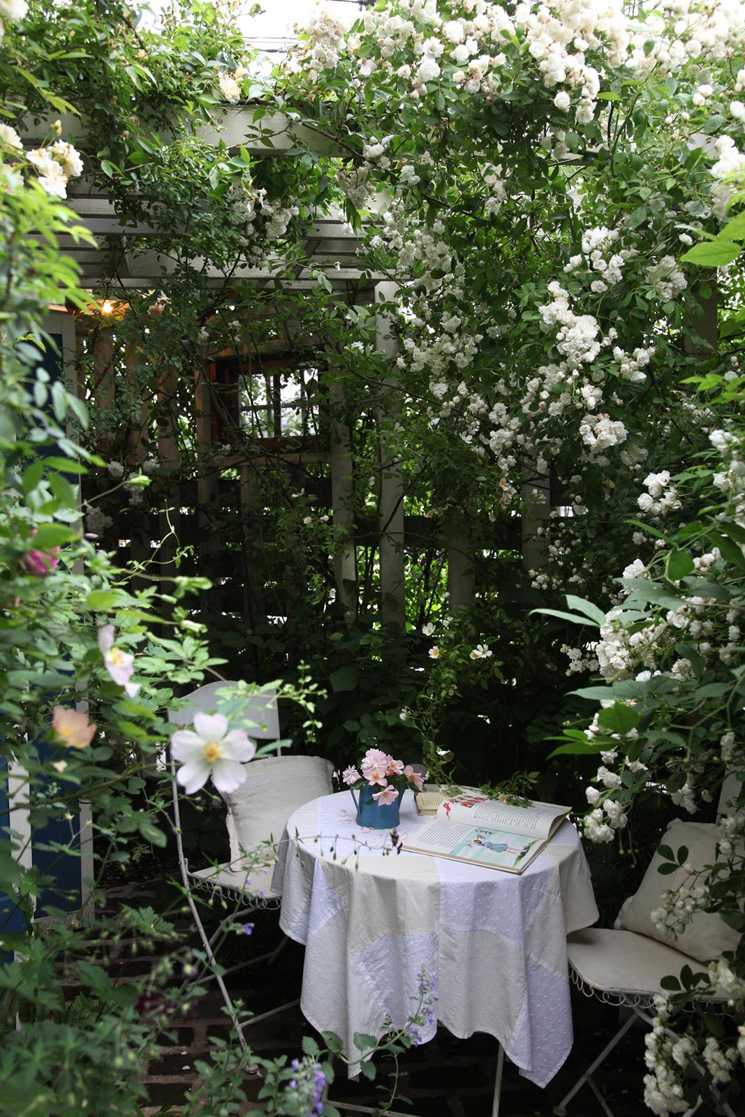 gardenfl024.jpg