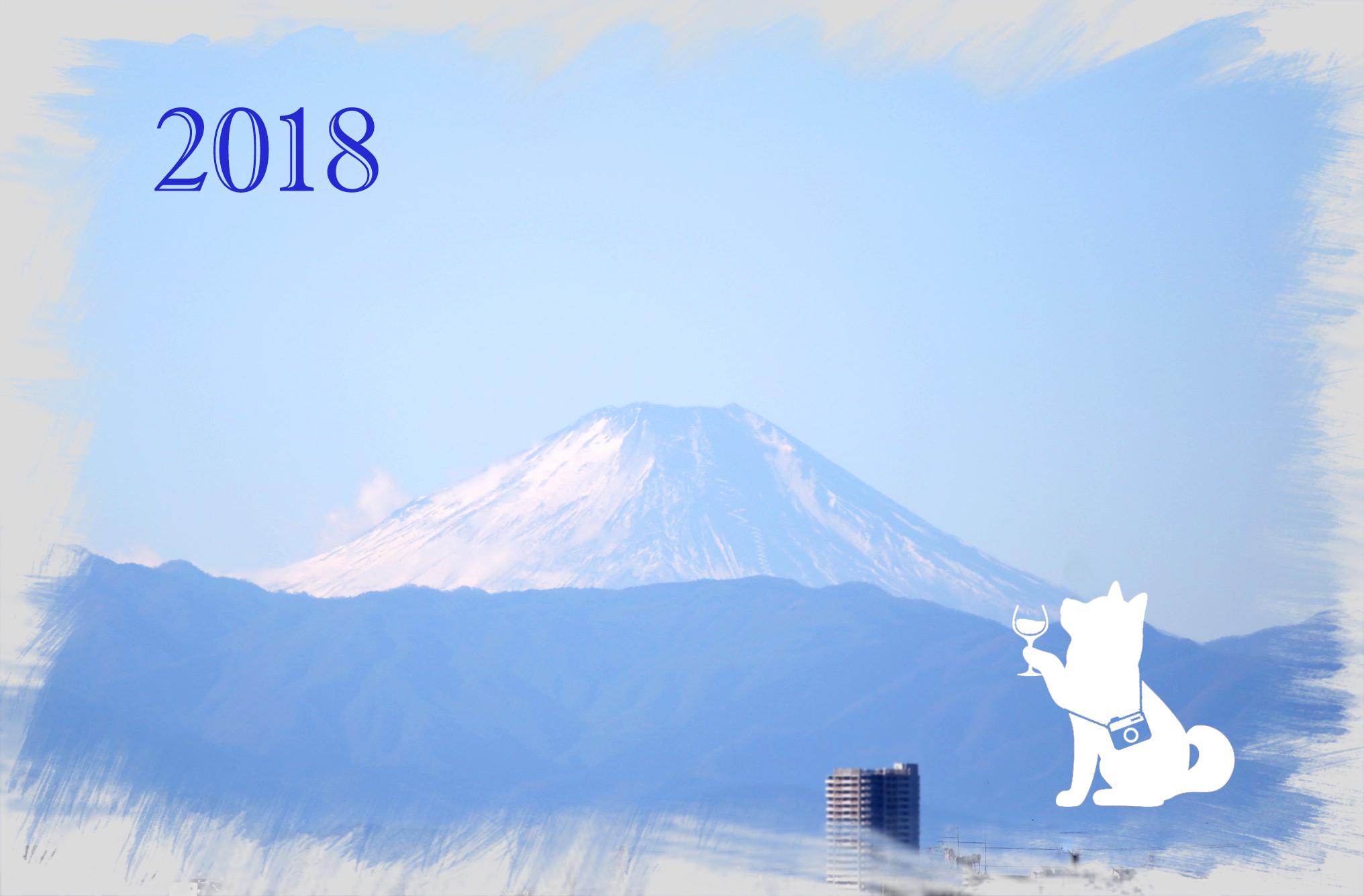 2018ny13.jpg