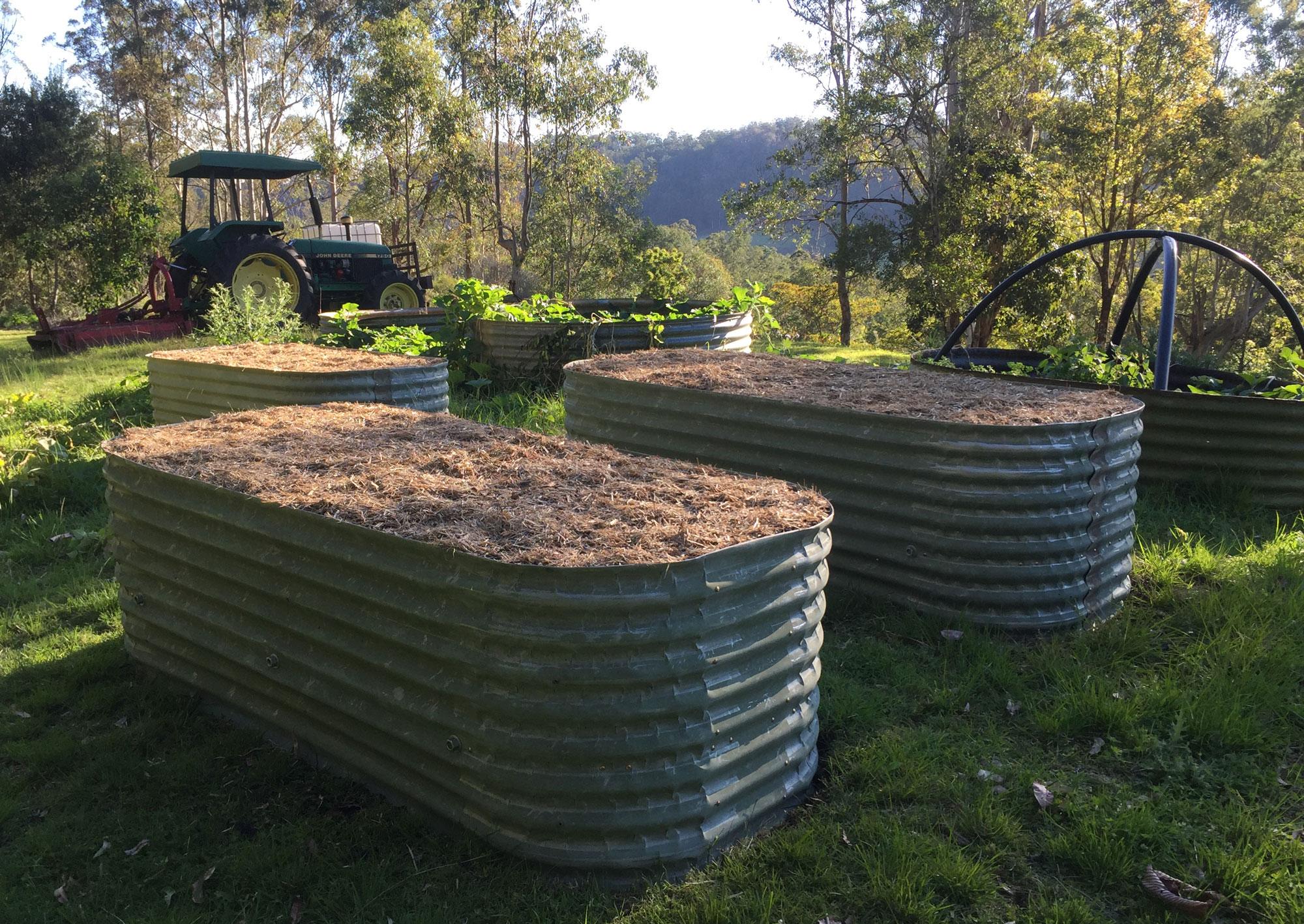 IMG_0593-Triple-Wombats-Rural.jpg