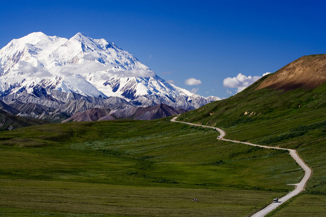 Denali Road // Photo: Nic McPhee