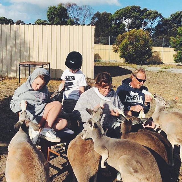Feeding time at @twosongssanctary with the gang 🖤 Feeding 17 kangaroos at once isnt always easy but these guys have it pretty sorted. Some of the kangaroos came here without being bottle fed and now happily feed on grass, seed and other plants happily, while a handful have one bottle a day and the smaller ones two to three bottles.  Many people aren't aware but kangaroos are lactose intolerant, they require a special veterinary formula which is rich in nutrients just like the milk their mother would give them, and it's a key requirement to raising kangaroo joeys from small to adulthood in good health, along with lots of love 💕 We are grateful for your donations which help us to buy food for these animals, Wombaroo, the formula we use, is it cheap, so Thankyou 🙌🏼 . #BaluBlueFoundation #TwoSongsSanctuary #RescueKangaroo #NativeAnimalRescue #WildlifeAware #CheckThePouch
