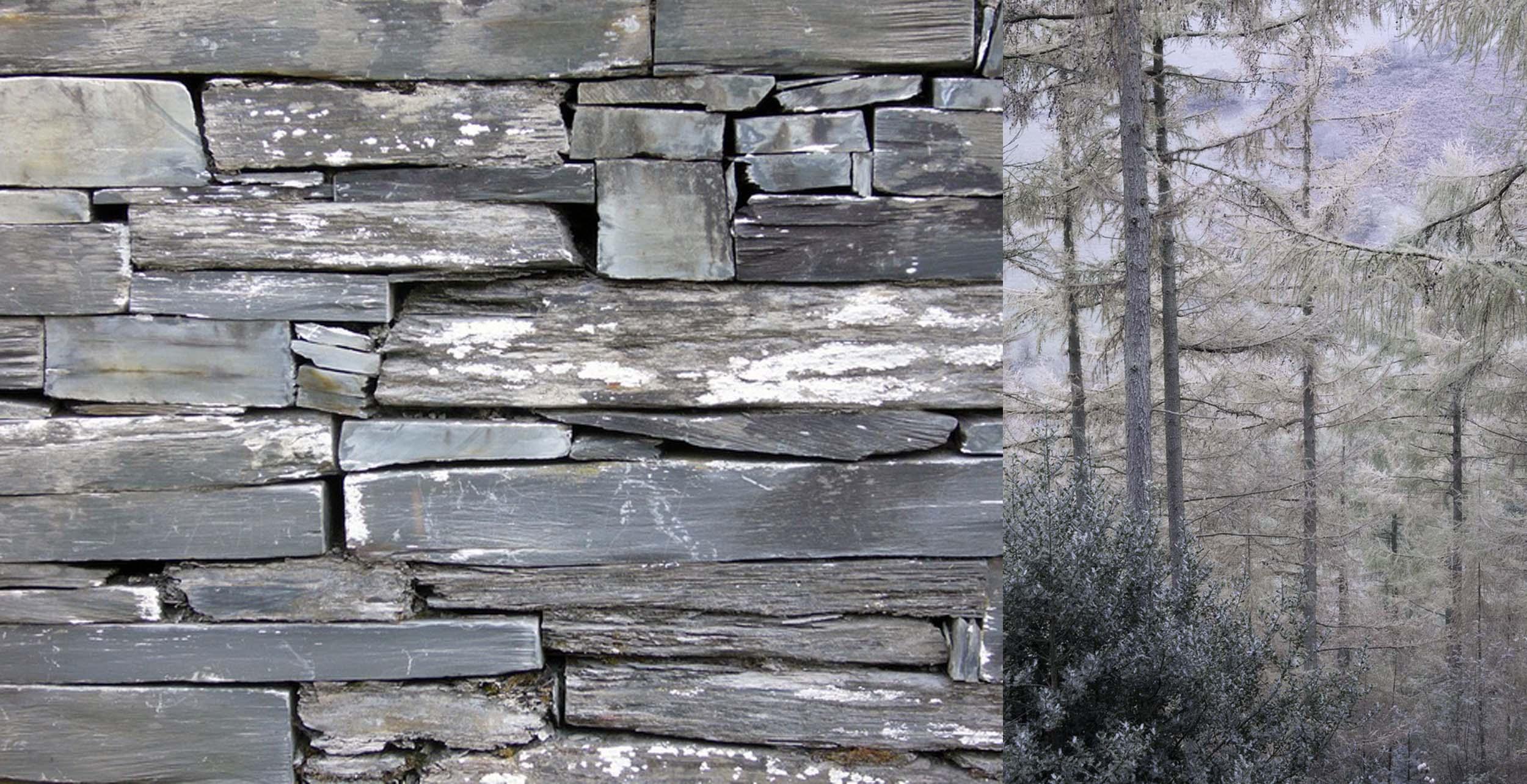 Helen Hughes Design Woodland House Materials.jpg