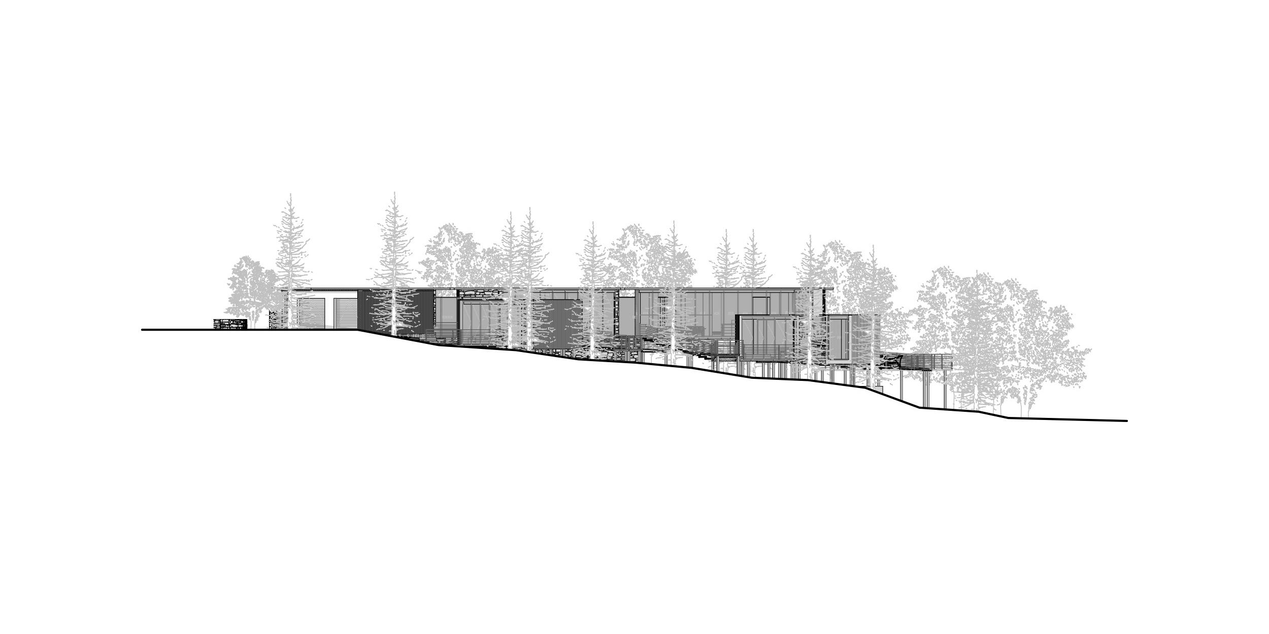 Helen Hughes Design Woodland House_Section.jpg
