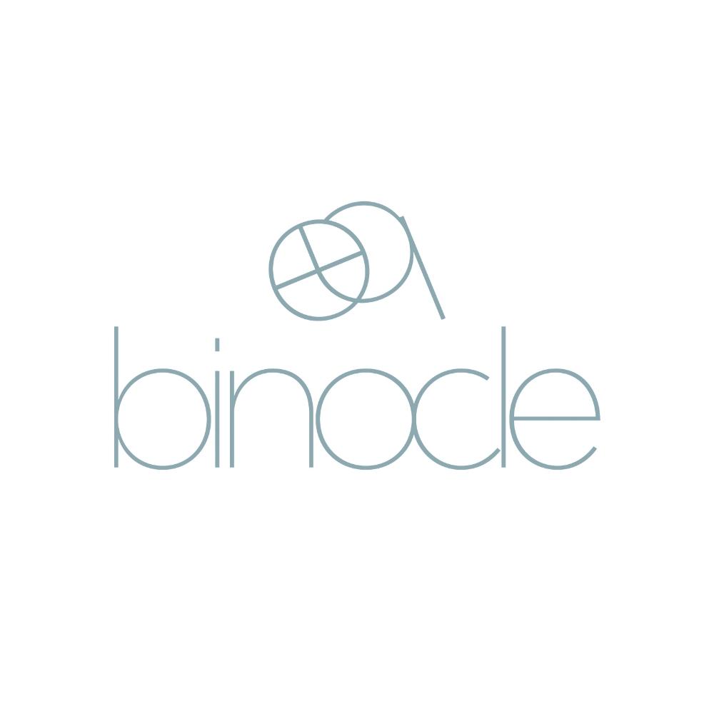 binocle_logo_blauw_licht_znsite.jpg