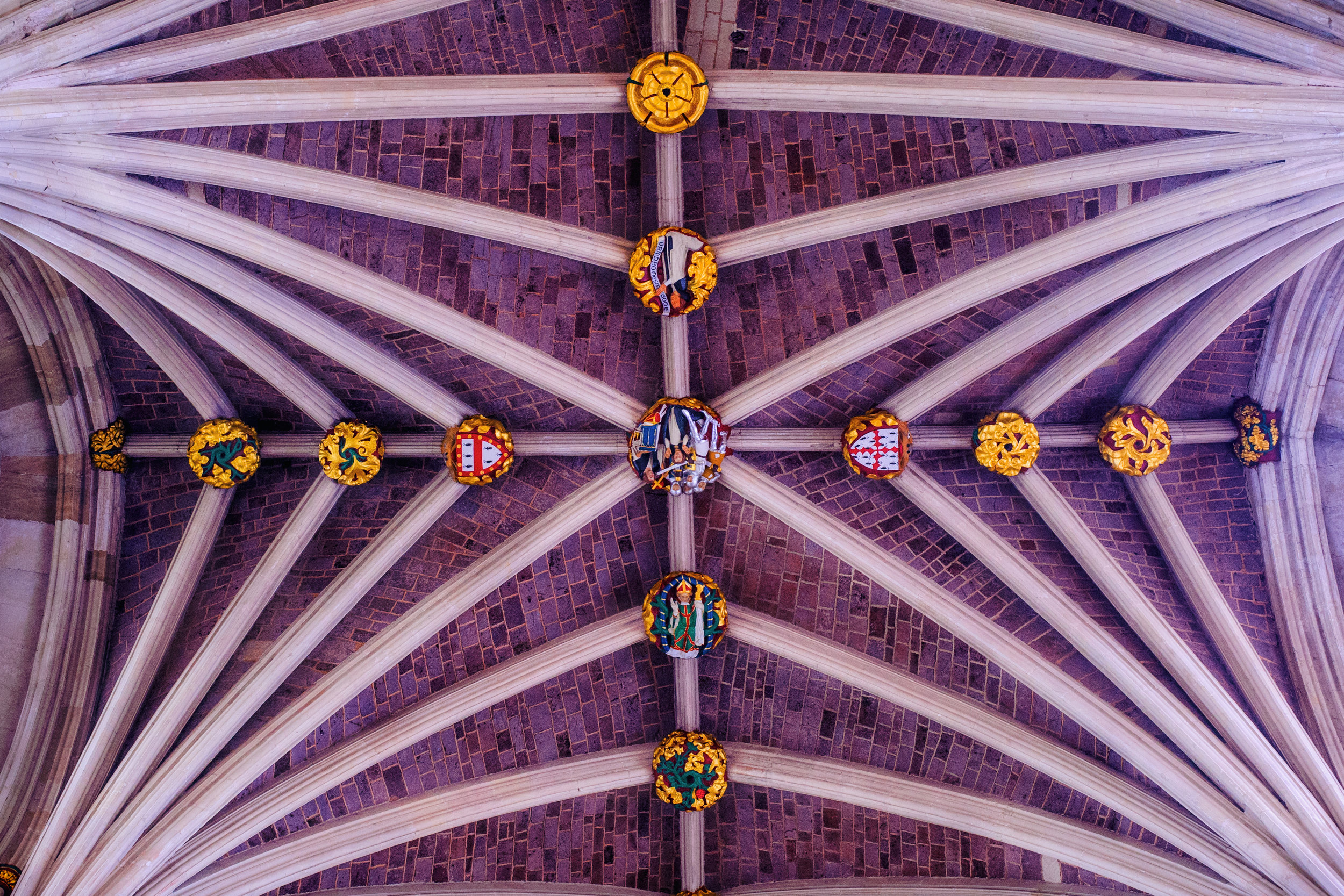 Don't forget to look up! Just a small part of the amazing ceiling of Exeter Cathedral