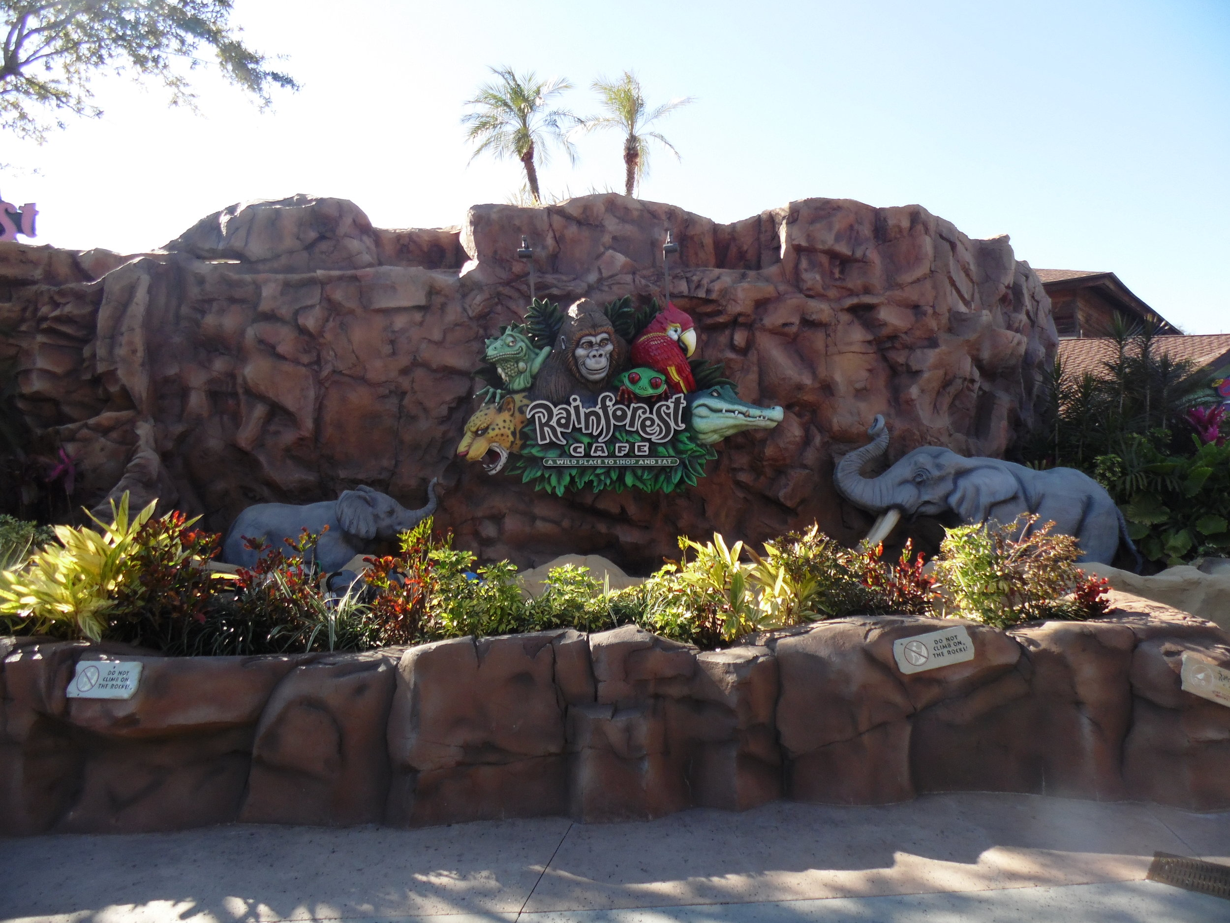 Rainforest Cafe, Marketplace, Disney Springs