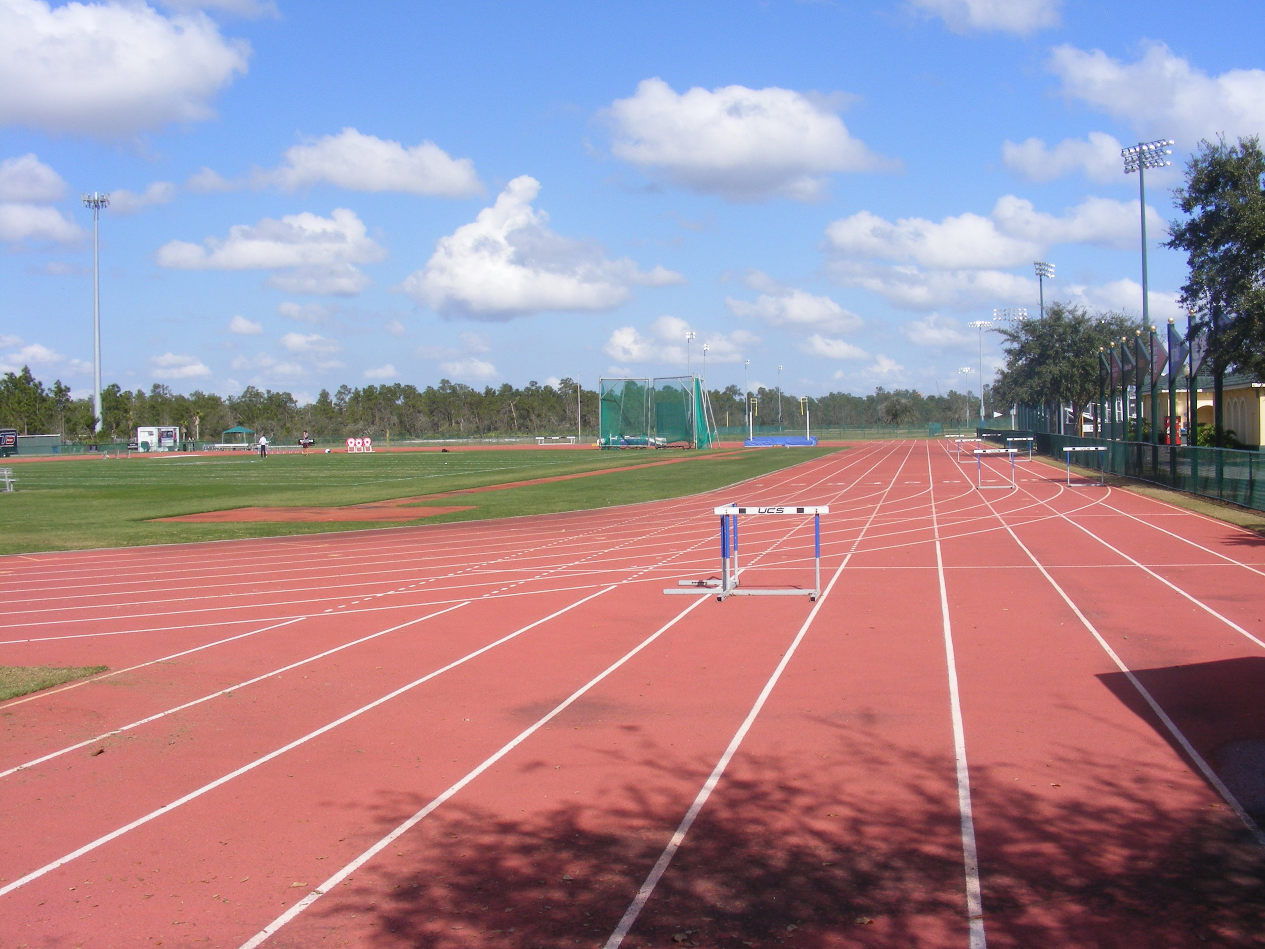 Track and Field, DIsney's Wide World of Sports