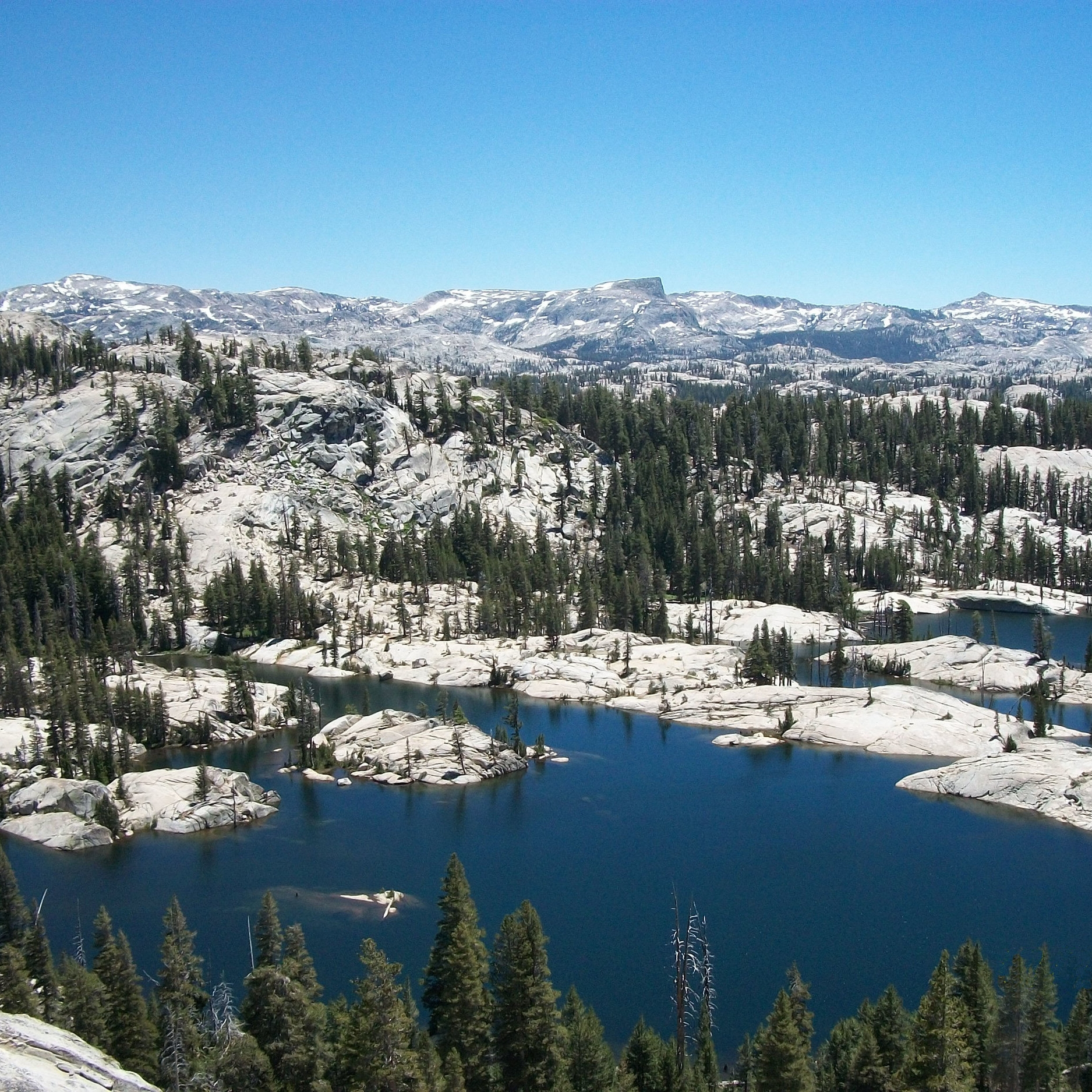stanislaus_national_forest