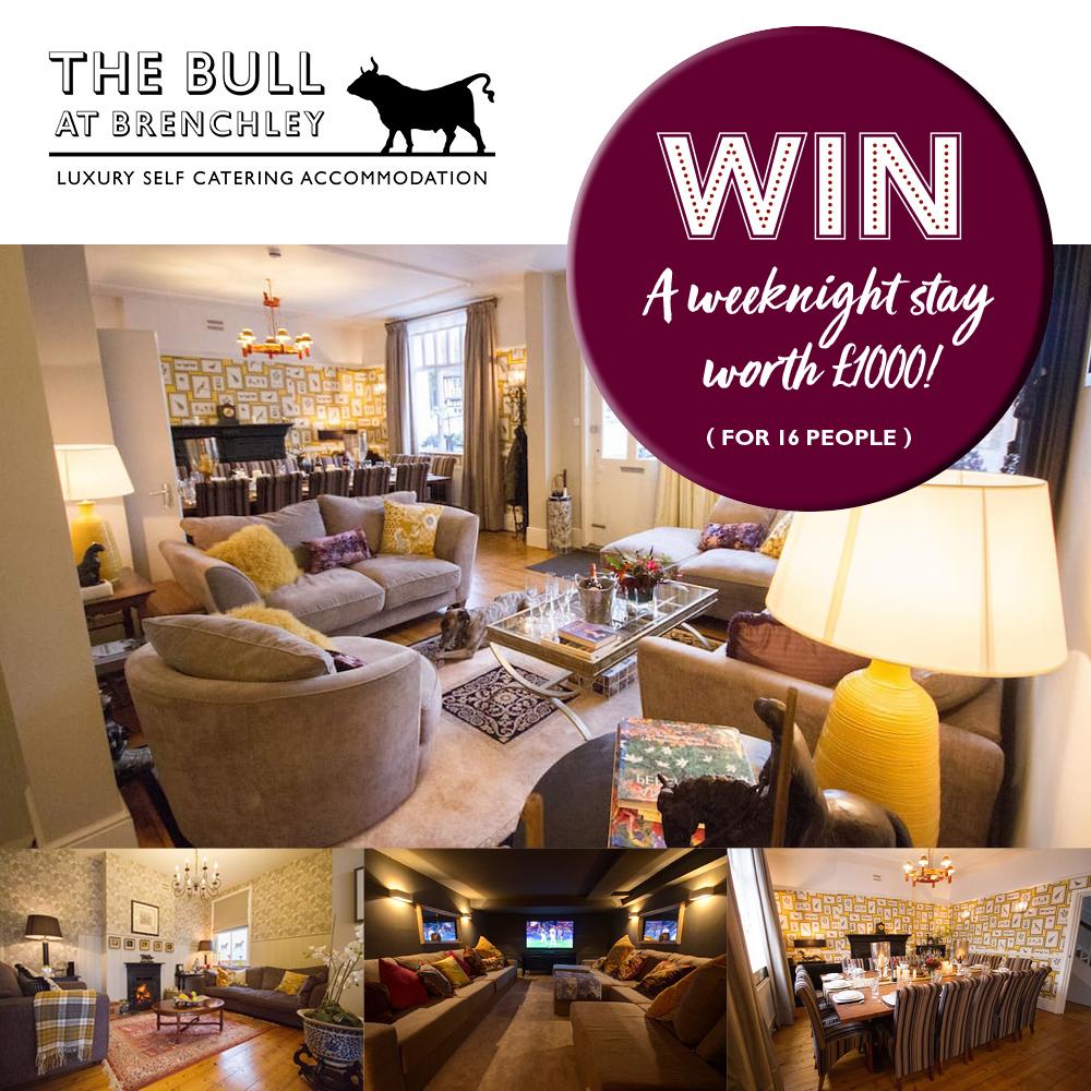 Week 12 - The Bull.jpg