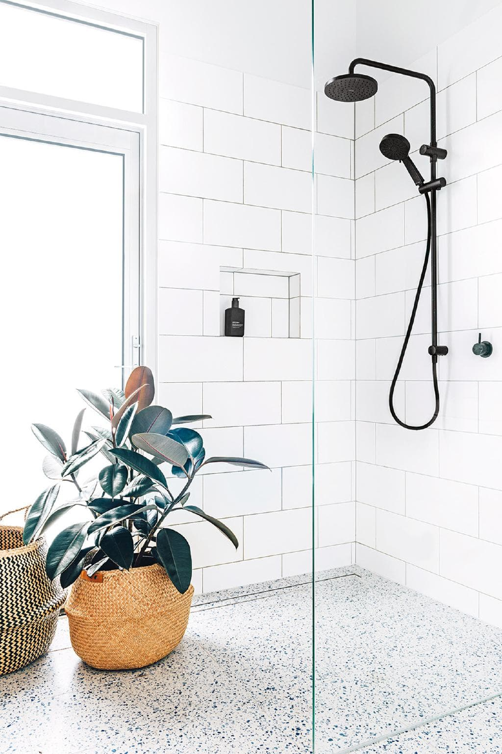 floor and plant bathroom.jpeg