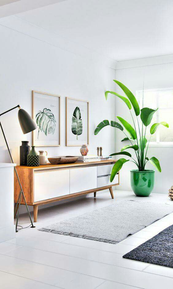 Twist on the Traditional - Look for obscure pot styles and integrated holders that elevate your plants off of the floor – holders are a great tip for smaller rooms as they give an illusion of openness and space. Find pots in materials that complement the current design of your home so that the plants seamlessly merge with the décor rather than become an obvious addition to it.