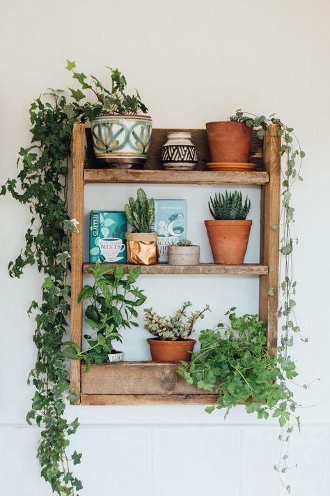Wooden Shelves with Tea.jpg