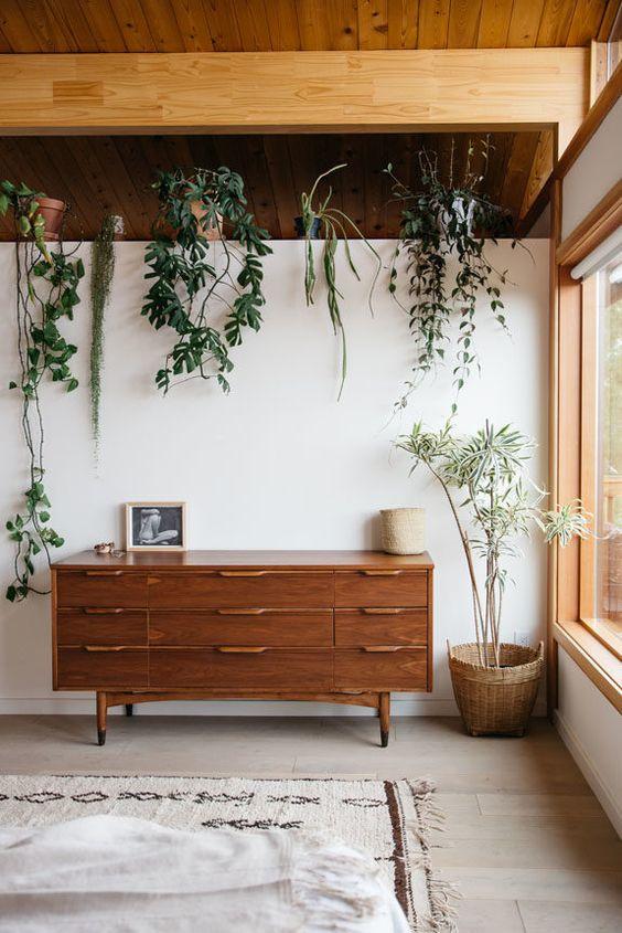 Side Board and plants.jpg