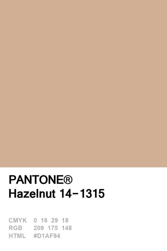 Pantone Hazelnut Colour Card.jpg