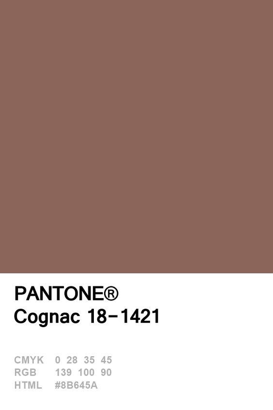 Pantone Congac Colour Card.jpg