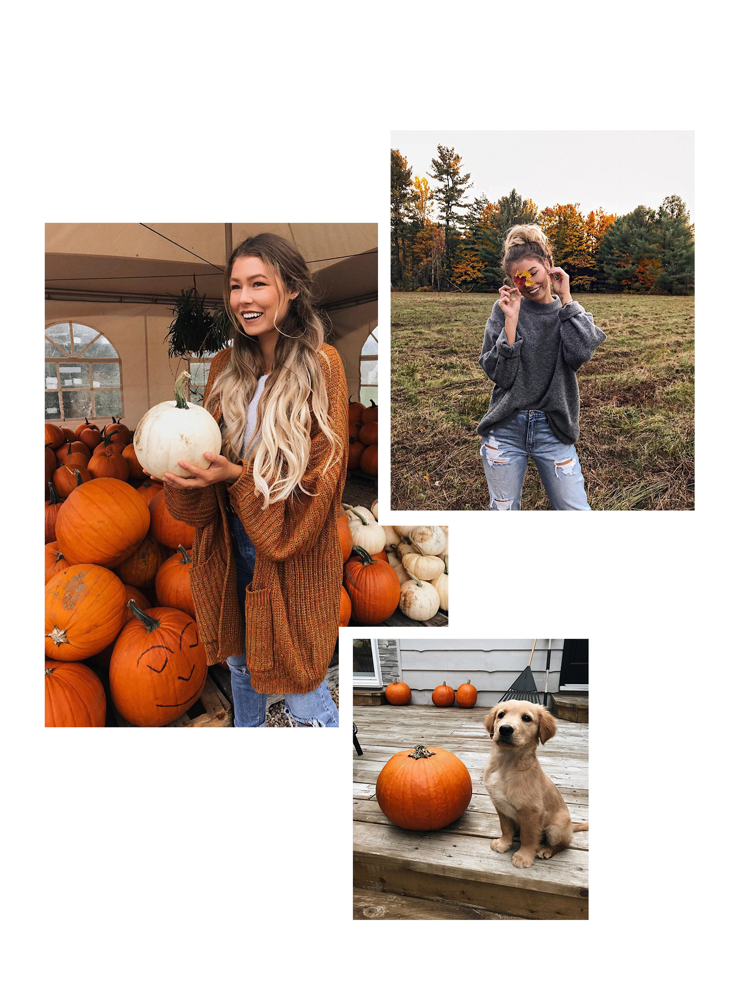 3. alex centomo - Youtuber and Instagram influencer Alex Centomo lives in Montreal, Canada and captures beautiful autumnal pictures with her cute golden retriever Boo. Not only do her photos have a great autumnal 'feeling', but she also has so many amazing outfit ideas to help you create the perfect a/w wardrobe. Follow here: alexcentomo