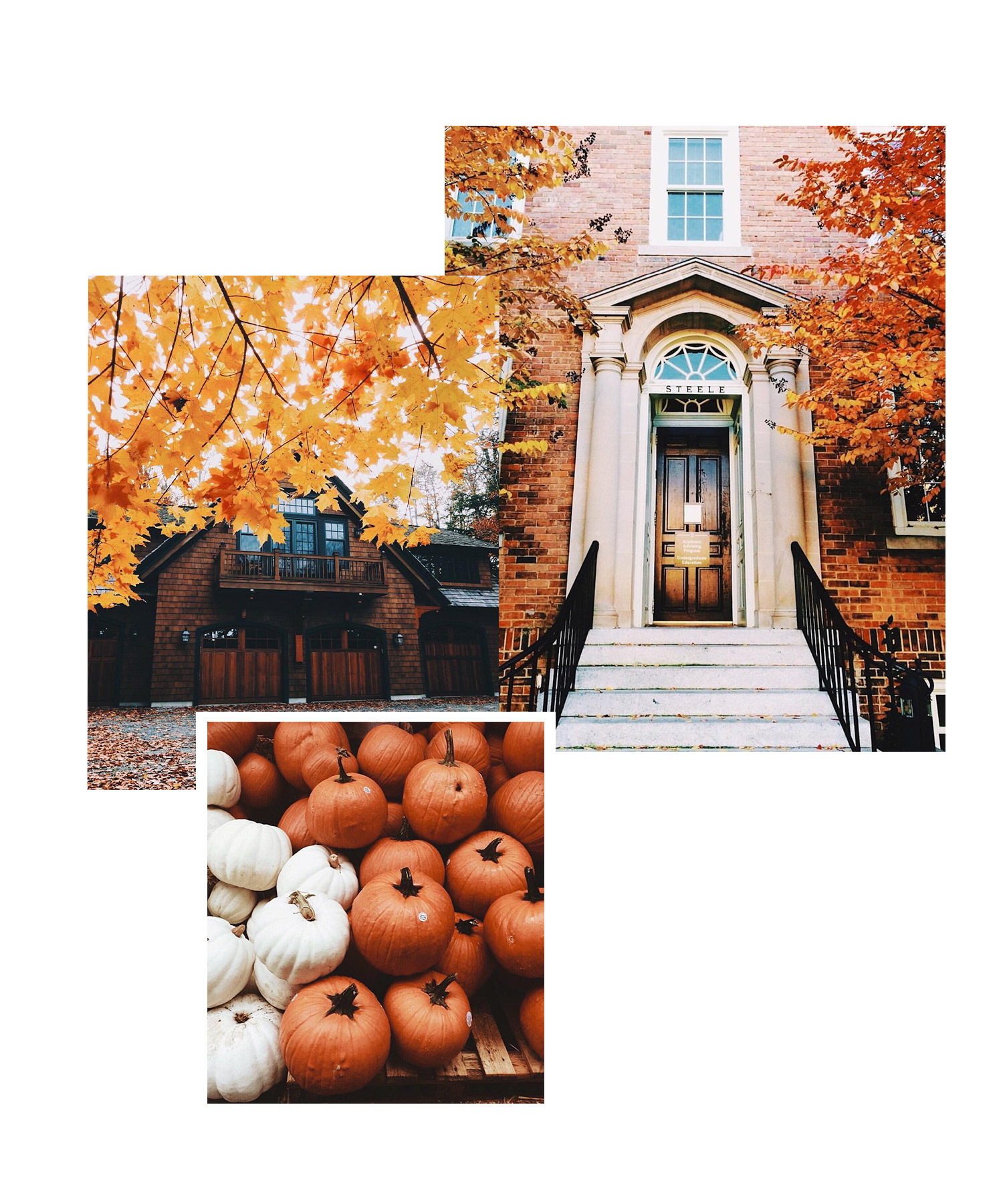 1. haunting.autumn - This account will give you autumnal inspiration all year round. The orange and brown toned photos are full of pumpkins, cinnamon rolls and classic autumnal landscapes. This really is the perfect place to find inspiration for your home this autumn. Follow here: haunting.autumn