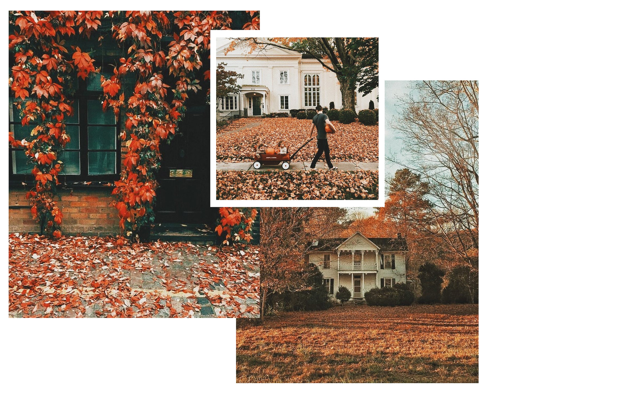 """4. we_heart_autumn - An entire account dedicated to giving you your daily dose of autumnal inspiration. Full of warm, orange images, this feed will help you transition into the cooler months with excitement rather than the usual complaints of """"oh it's so cold and dark."""" Follow here: we_heart_autumn"""